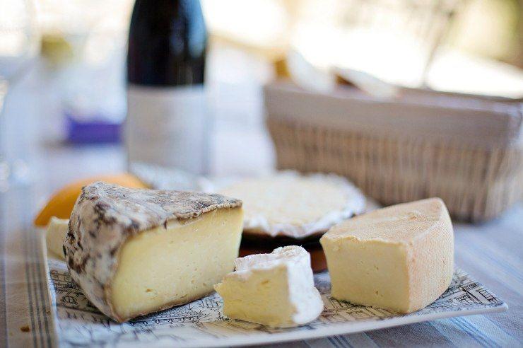 vari tipi di formaggi