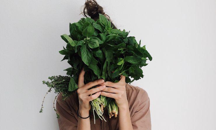 verdura da non congelare