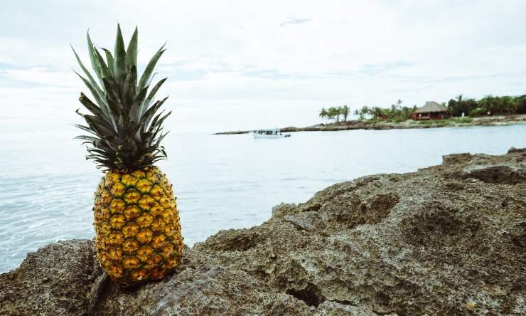 frutta per abbronzatura