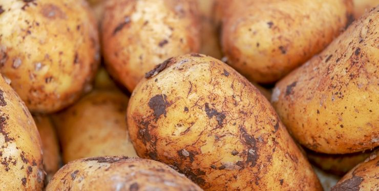 riciclare le bucce di patate