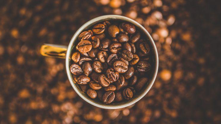 caffè funghi fa bene