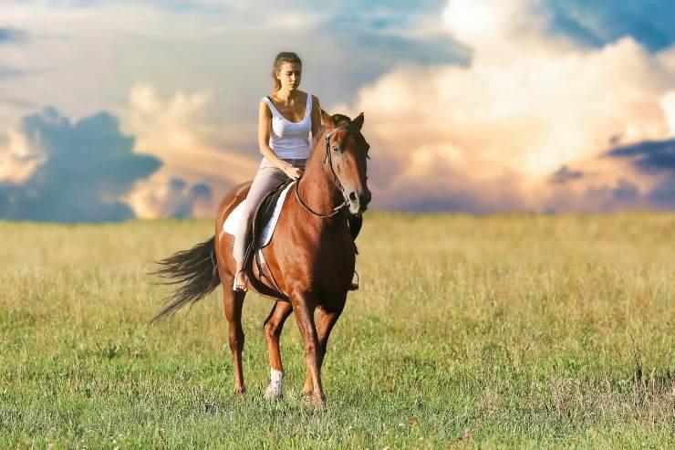 sognare il cavallo