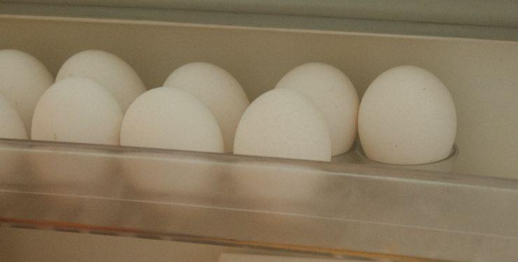 conservare le uova in frigo