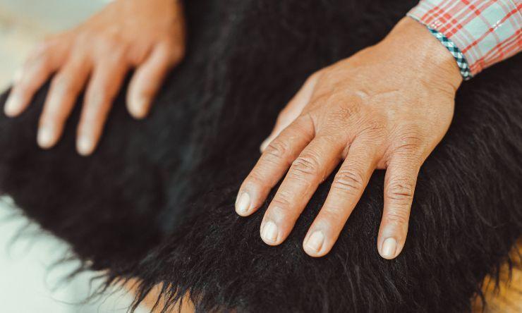 cause delle unghie rotte