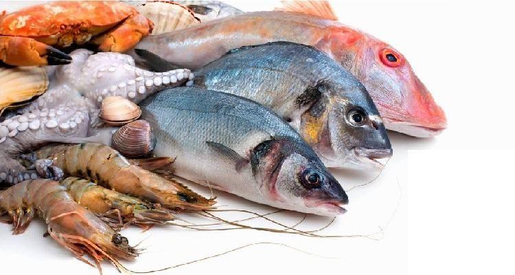 Pesci e dieta