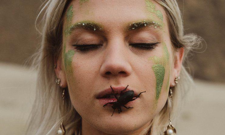 insetti da evitare