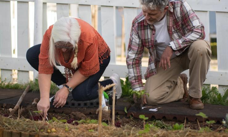 lavori in giardino a settembre