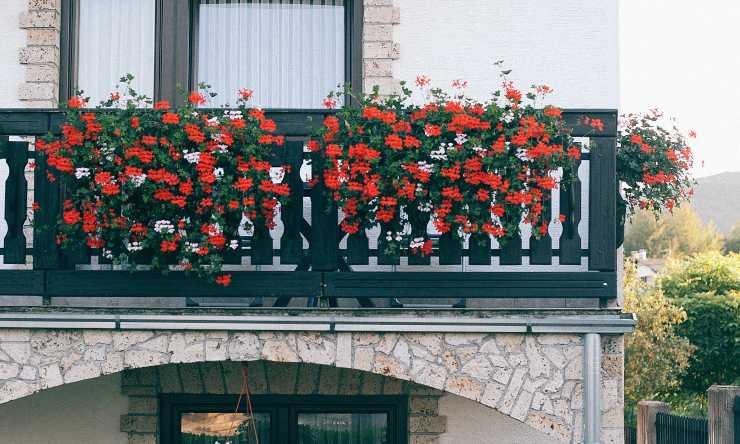 balcone fiorito in autunno